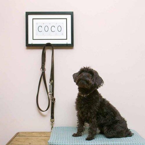 Personalised dog lead hook - small