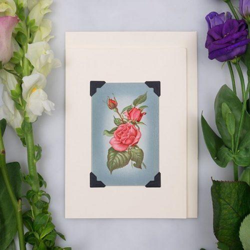 Vintage Card - Peach Roses